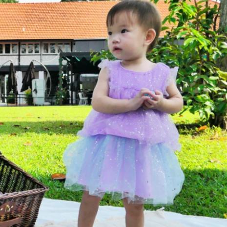 Aurora Tulle Dress