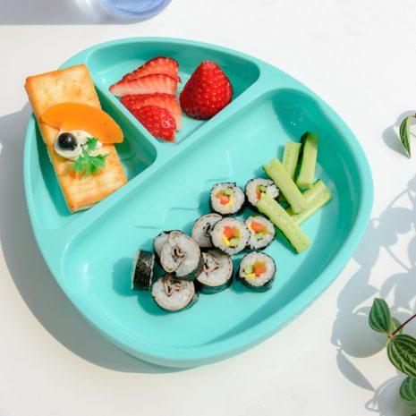 Monee Dino Food Plate