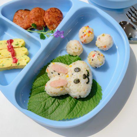 Monee Dino Food Plate b