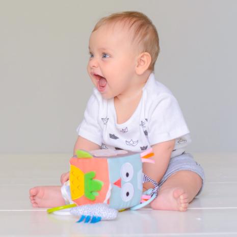 Taf Toys Development Cube 2