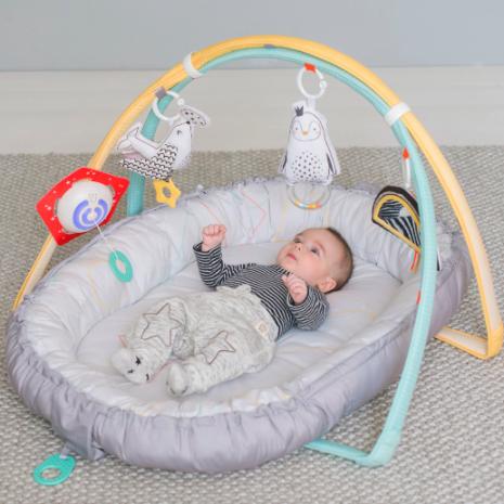 Taf Toys Musical Newborn Nest & Gym