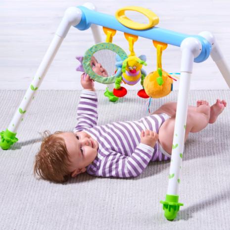 Taf Toys Take to Play Baby Gym 1