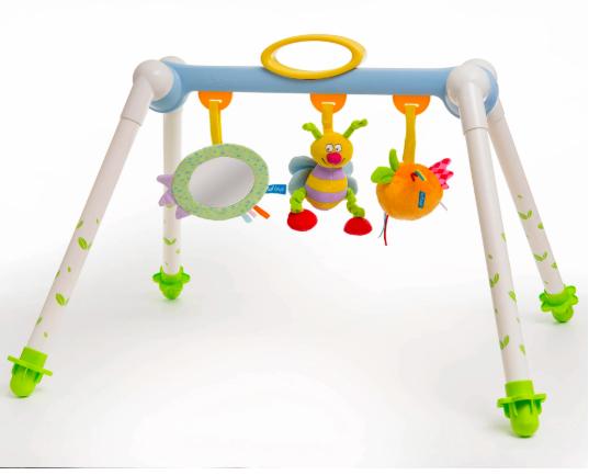 Taf Toys Take to Play Baby Gym